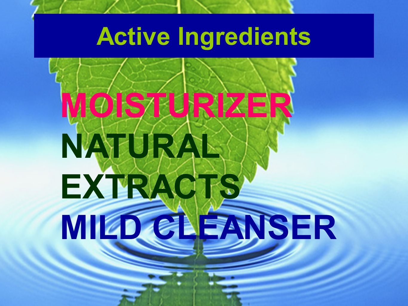 Active Ingredients MOISTURIZER NATURAL EXTRACTS MILD CLEANSER