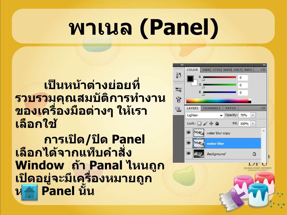 พาเนล (Panel)