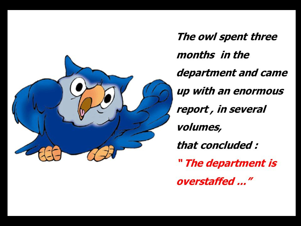 The owl spent three months in the department and came up with an enormous report , in several volumes,