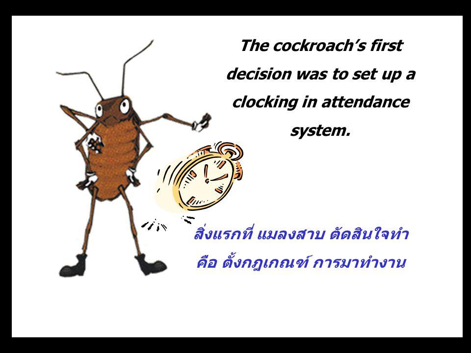 สิ่งแรกที่ แมลงสาบ ตัดสินใจทำ คือ ตั้งกฎเกณฑ์ การมาทำงาน