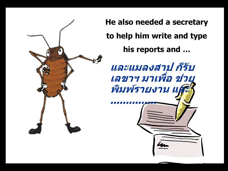 และแมลงสาป ก็รับเลขาฯ มาเพื่อ ช่วยพิมพ์รายงาน และ ...............