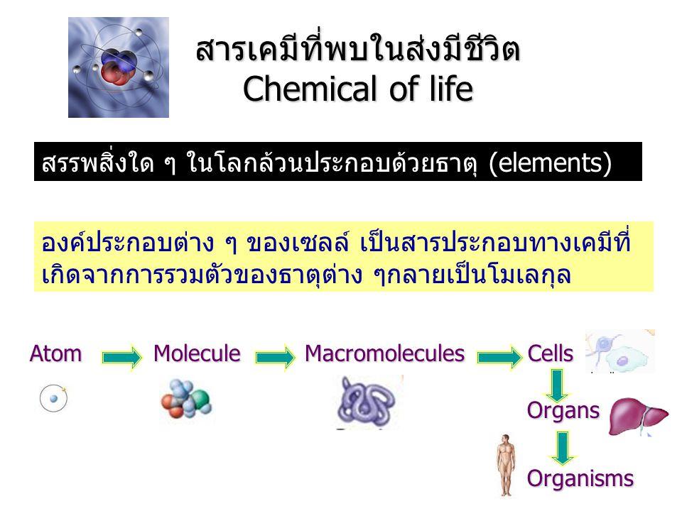 สารเคมีที่พบในส่งมีชีวิต Chemical of life