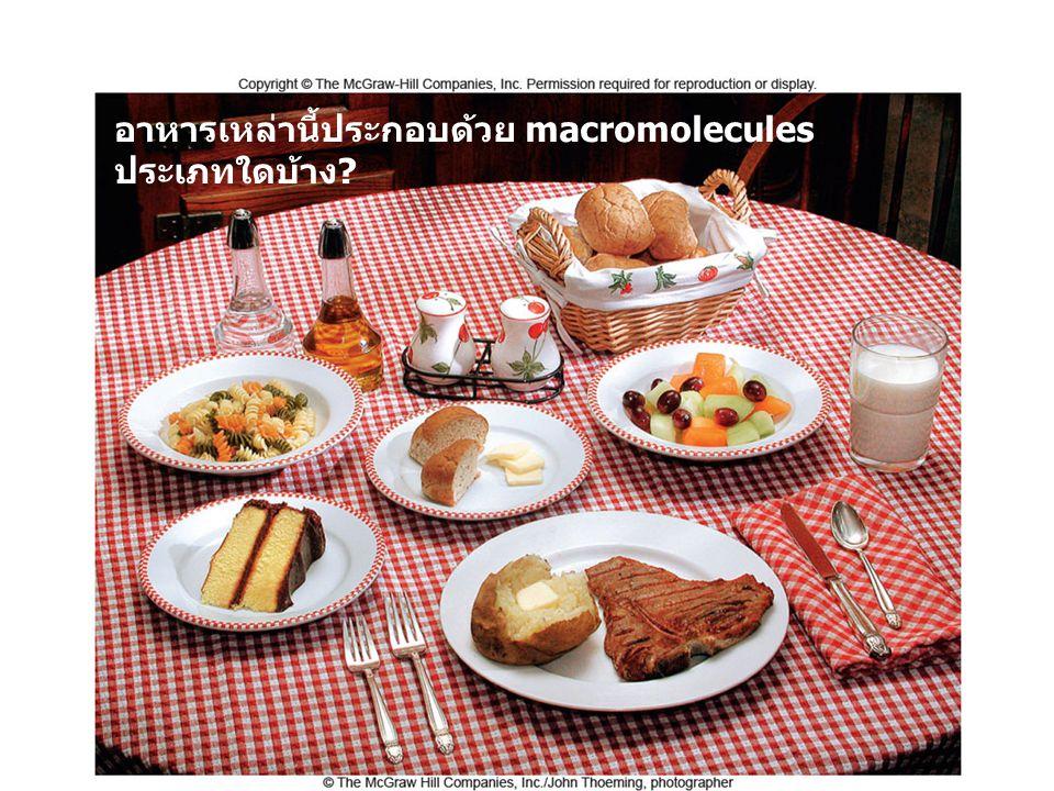 อาหารเหล่านี้ประกอบด้วย macromolecules ประเภทใดบ้าง
