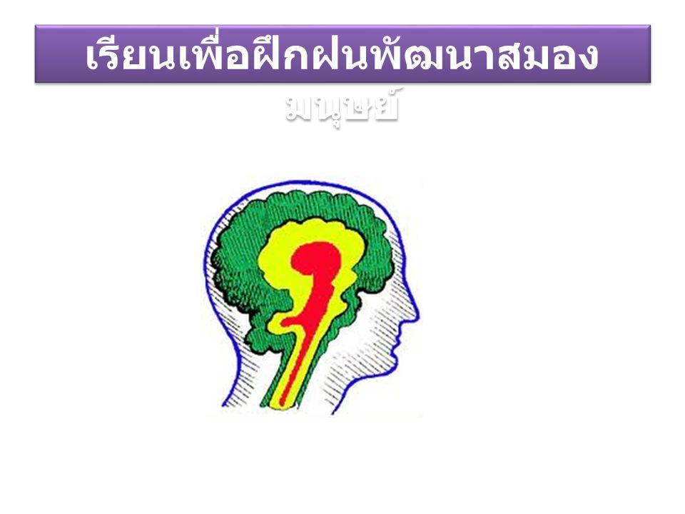 เรียนเพื่อฝึกฝนพัฒนาสมองมนุษย์