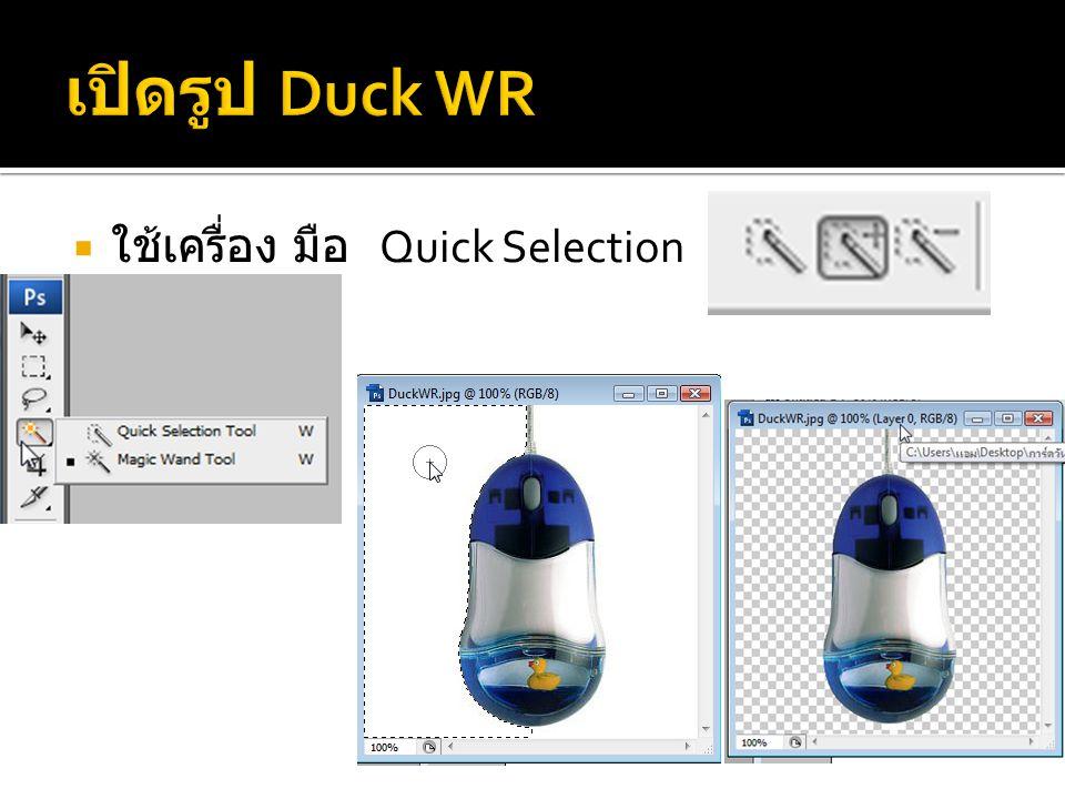 เปิดรูป Duck WR ใช้เครื่อง มือ Quick Selection