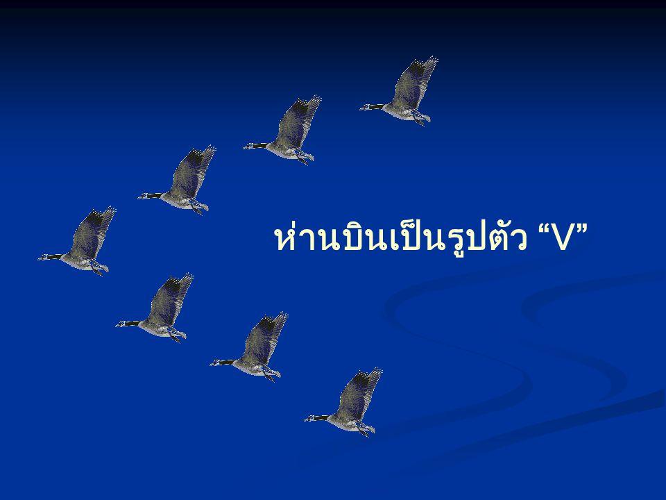 ห่านบินเป็นรูปตัว V