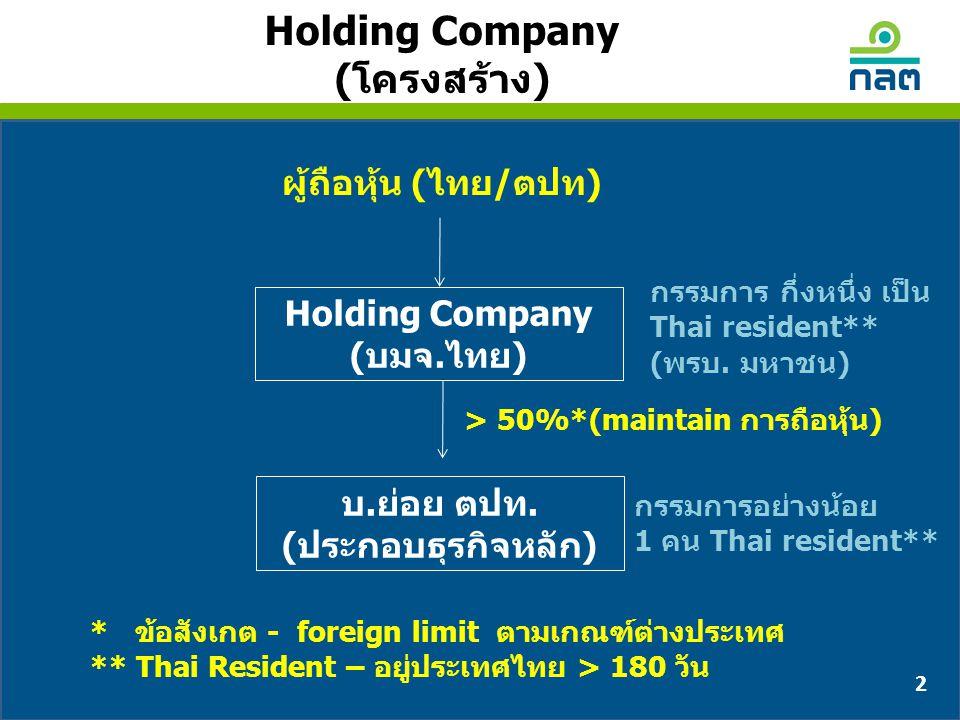 Holding Company (โครงสร้าง)