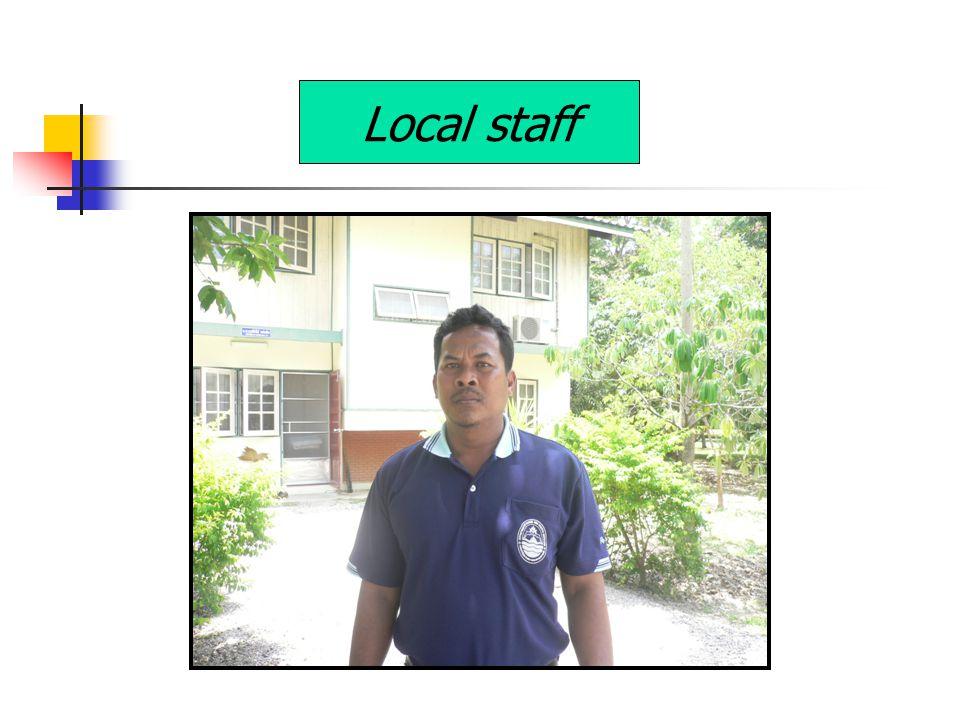 Local staff