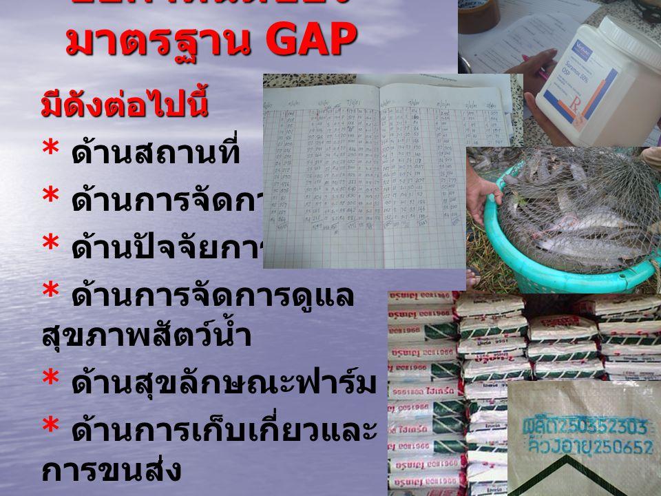 ข้อกำหนดของมาตรฐาน GAP