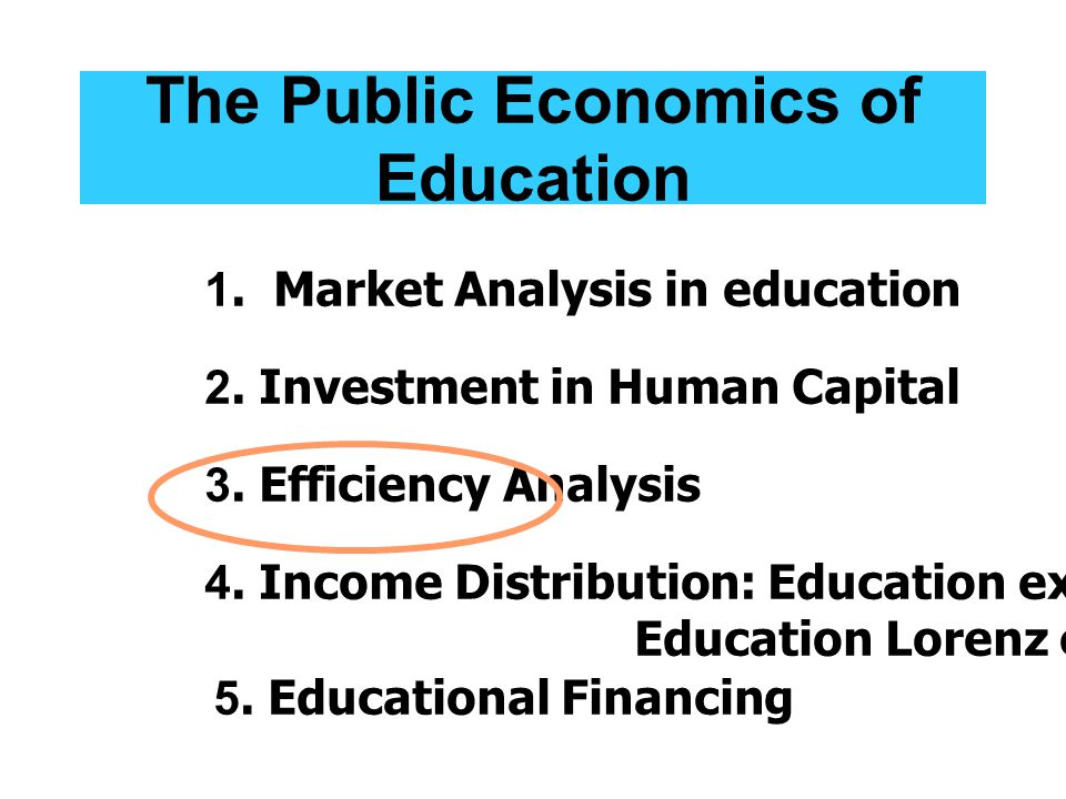 The Public Economics of Education