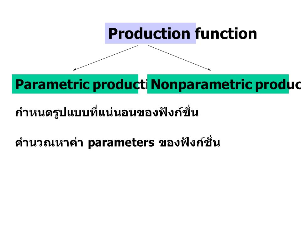 Production function Parametric production function