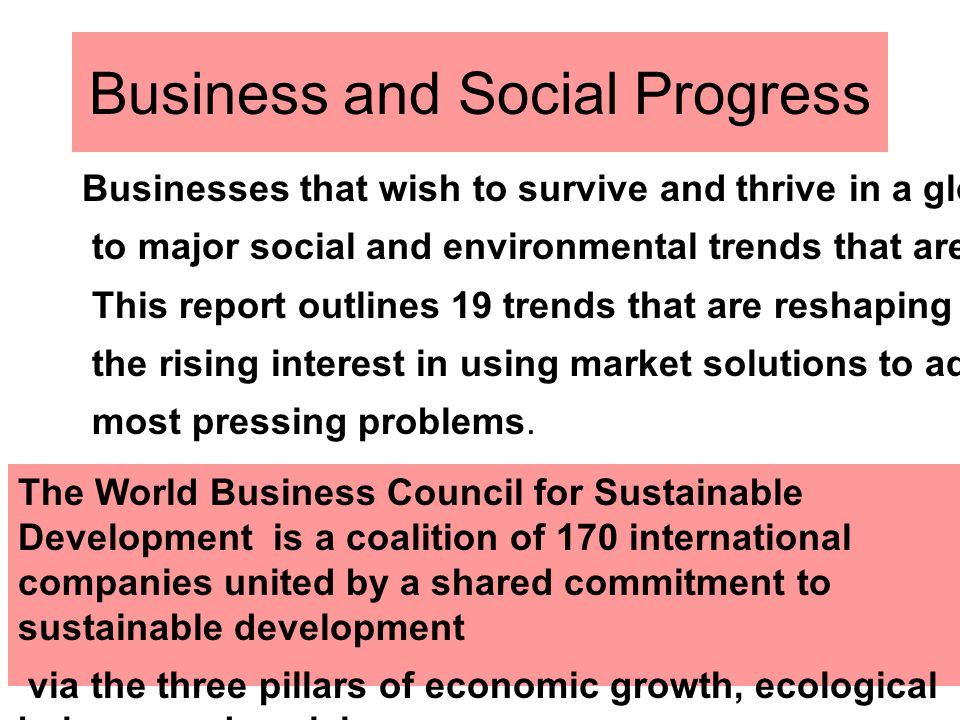 Business and Social Progress