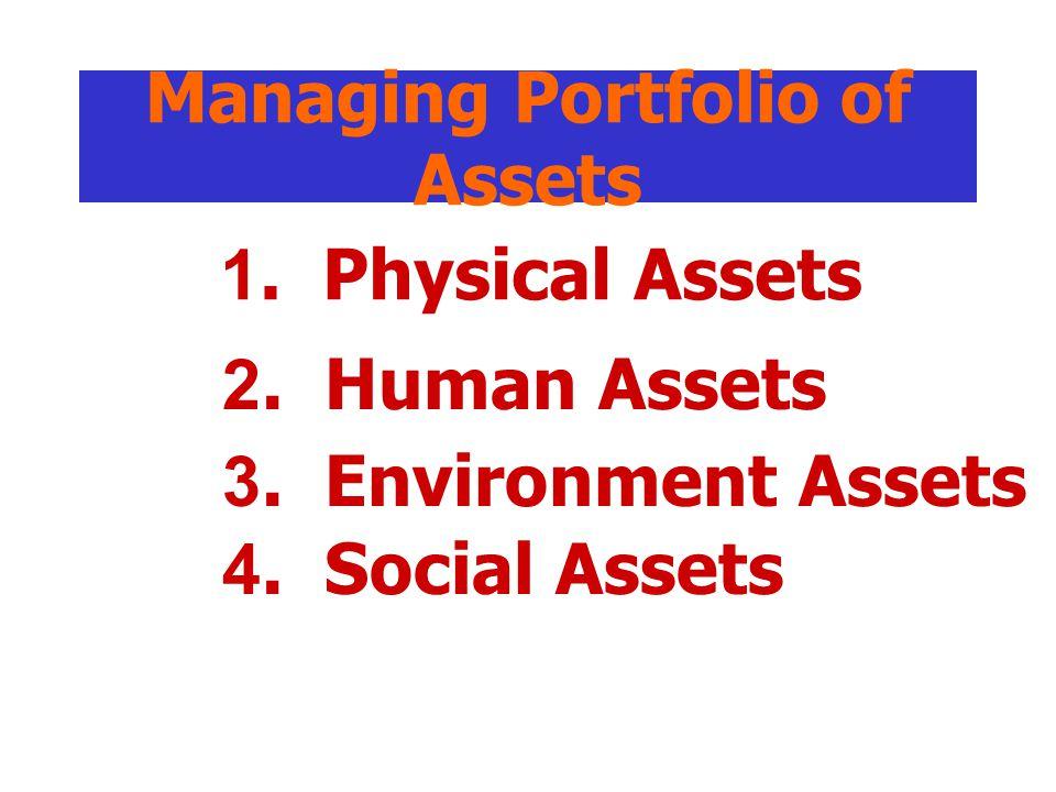 Managing Portfolio of Assets