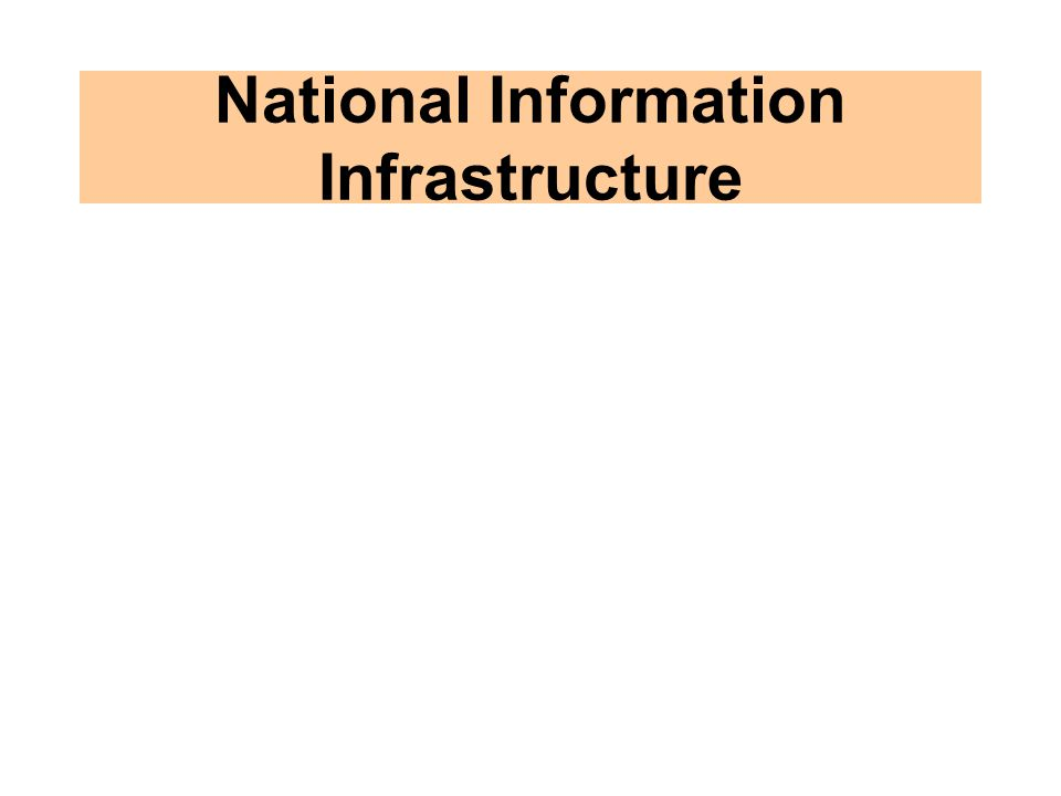 National Information Infrastructure