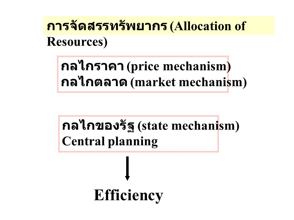 Efficiency การจัดสรรทรัพยากร (Allocation of Resources)