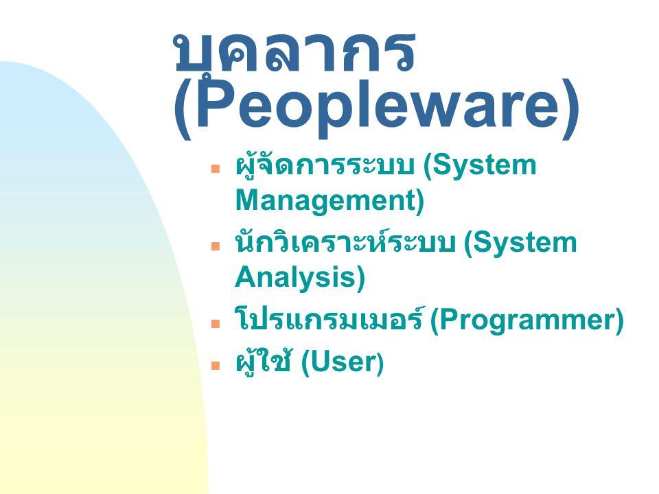 บุคลากร (Peopleware) ผู้จัดการระบบ (System Management)