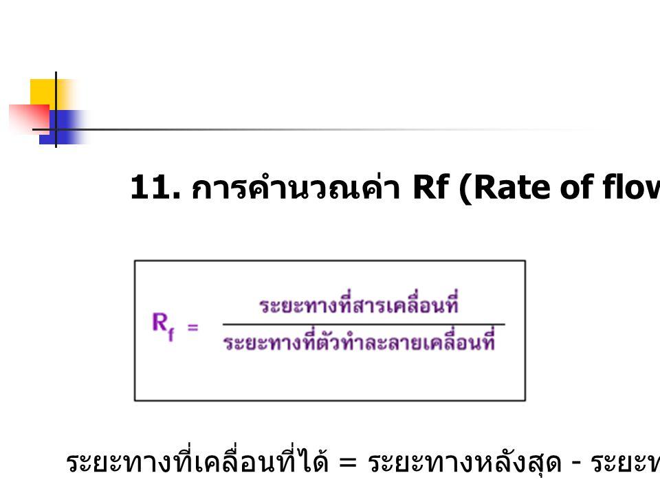 11. การคำนวณค่า Rf (Rate of flow)