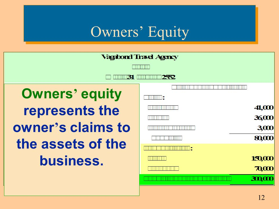 Owners' Equity Owners' equity represents the owner's claims to the assets of the business.