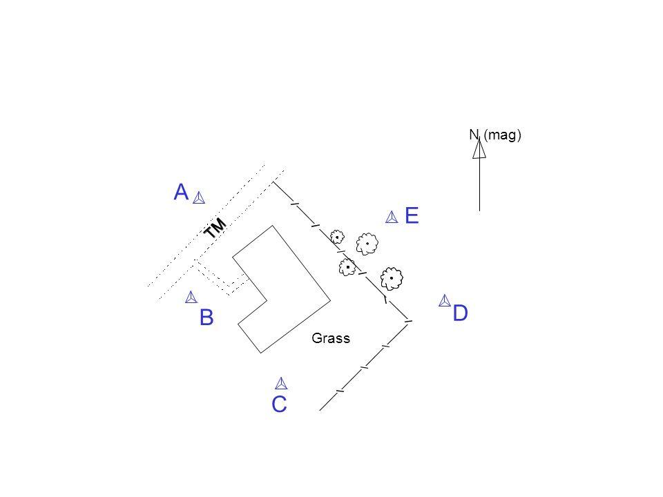 Grass N (mag) A C D E B