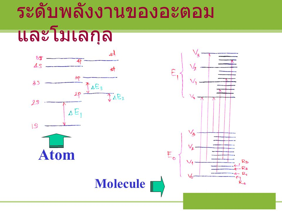 ระดับพลังงานของอะตอมและโมเลกุล
