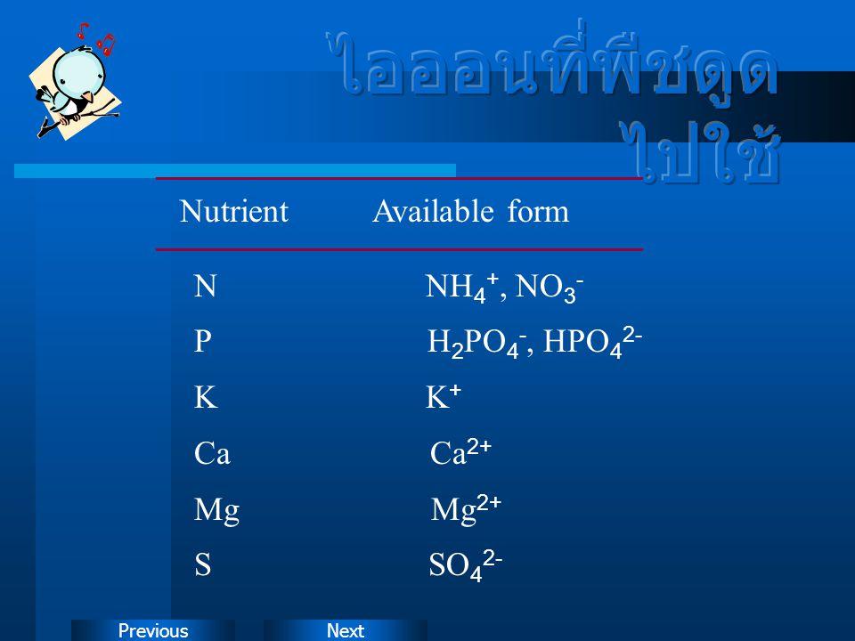 ไอออนที่พืชดูดไปใช้ Nutrient Available form N NH4+, NO3-