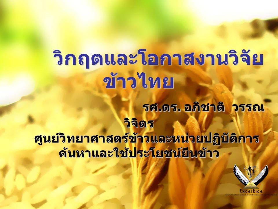 วิกฤตและโอกาสงานวิจัยข้าวไทย รศ. ดร