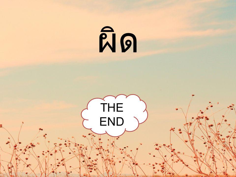 ผิด THE END