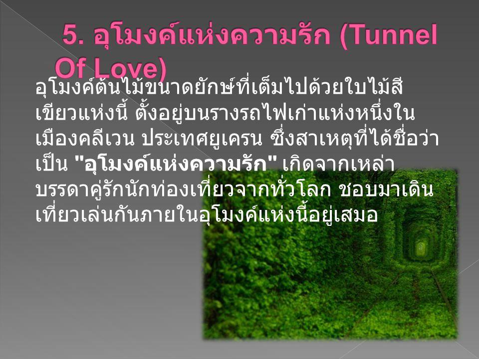 5. อุโมงค์แห่งความรัก (Tunnel Of Love)