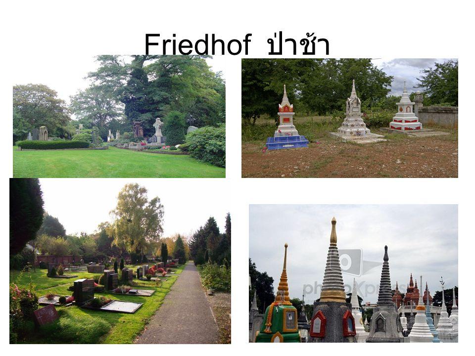 Friedhof ป่าช้า