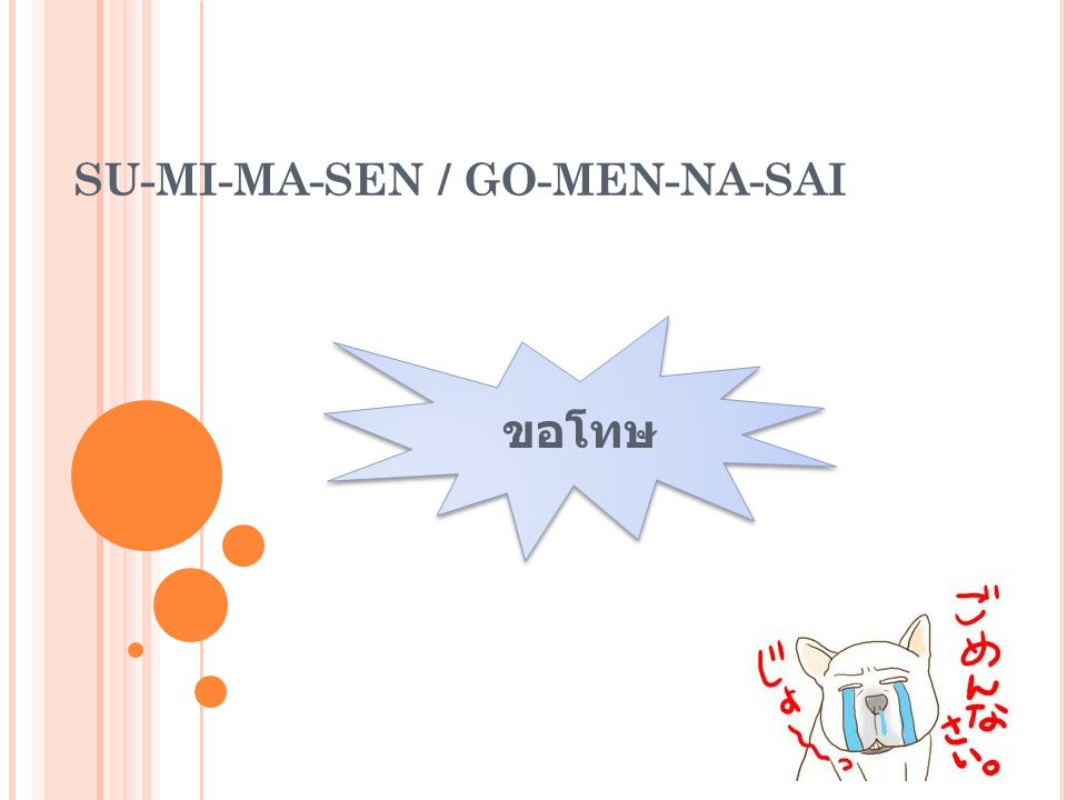 Su-mi-ma-sen / Go-men-na-sai