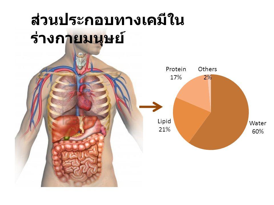 ส่วนประกอบทางเคมีในร่างกายมนุษย์