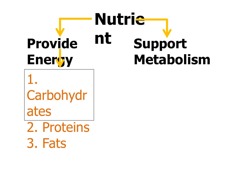 Nutrient Provide Energy Support Metabolism 1. Carbohydrates