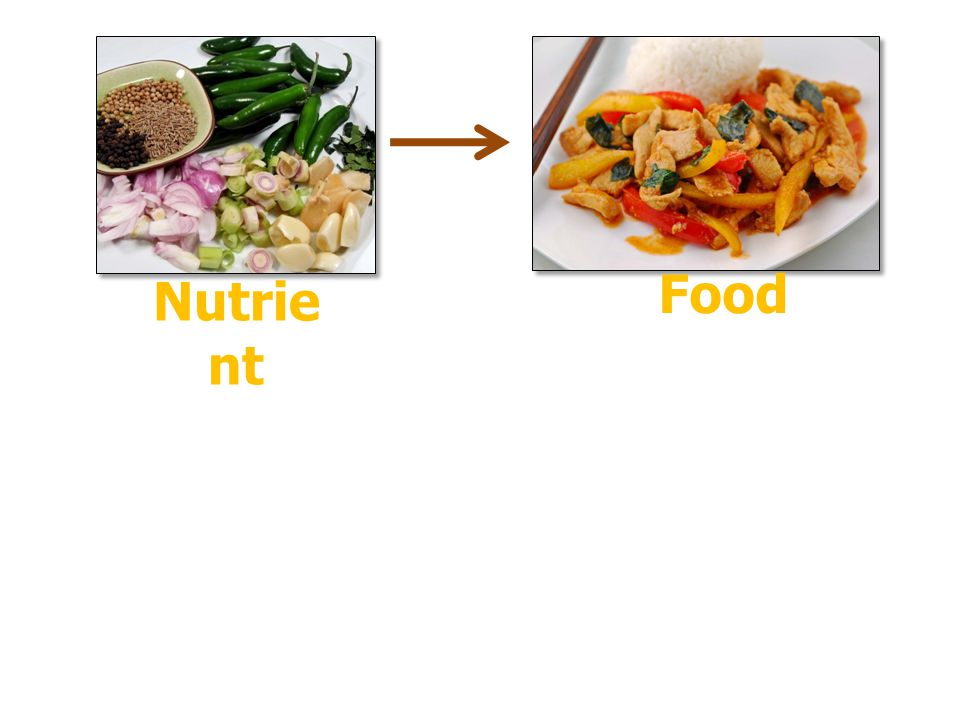 Food Nutrient