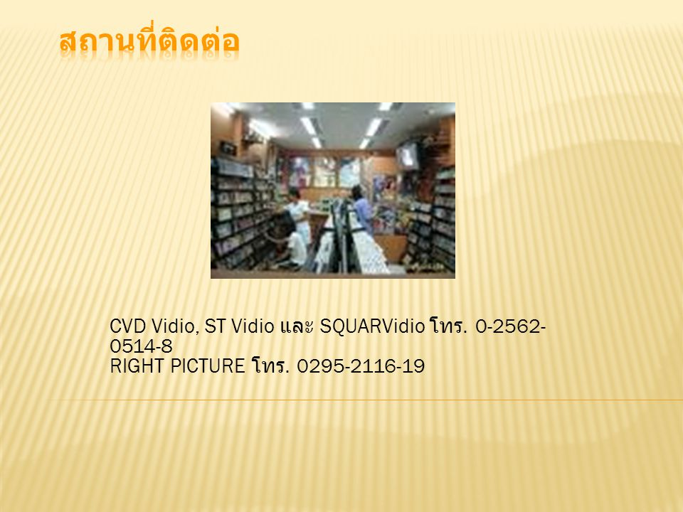 สถานที่ติดต่อ CVD Vidio, ST Vidio และ SQUARVidio โทร.