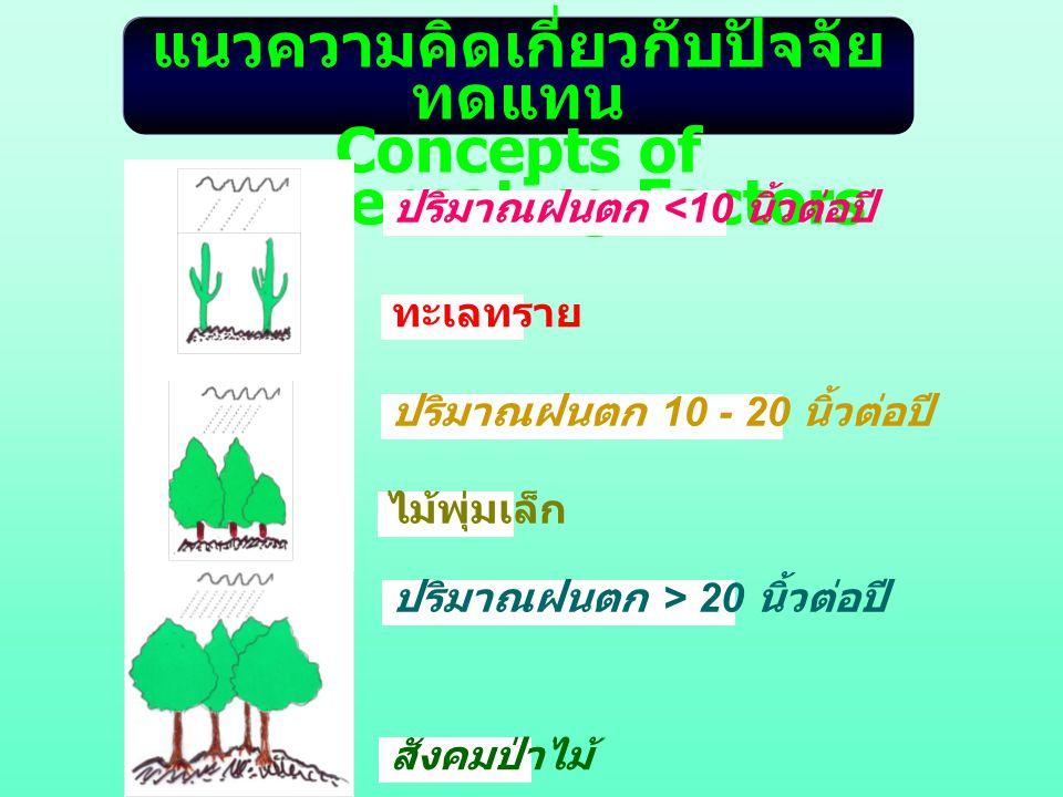 แนวความคิดเกี่ยวกับปัจจัยทดแทน Concepts of Compensating Factors