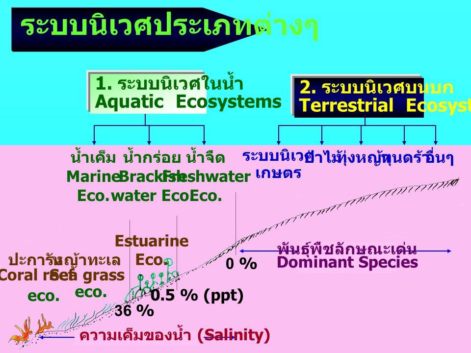 พันธุ์พืชลักษณะเด่น Dominant Species