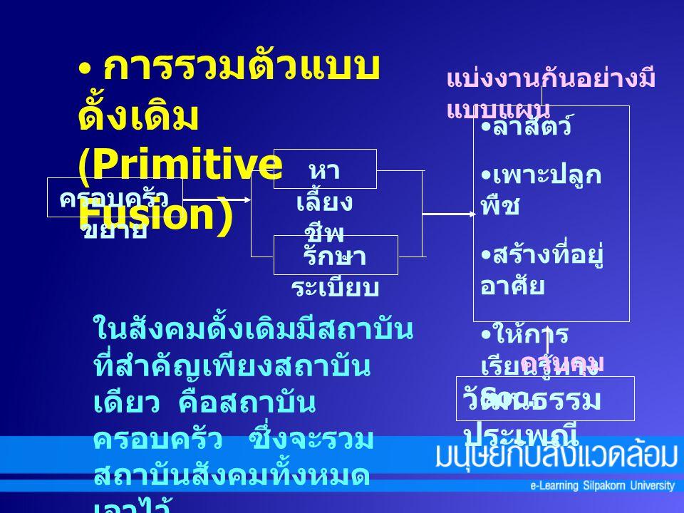 การรวมตัวแบบดั้งเดิม (Primitive Fusion)