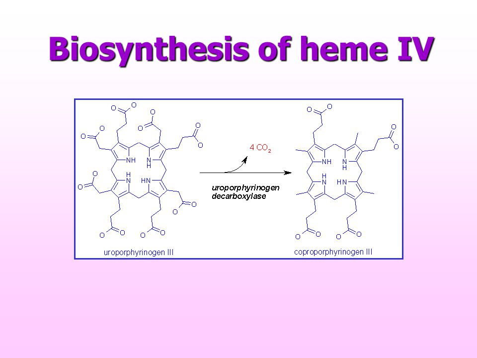 Biosynthesis of heme IV