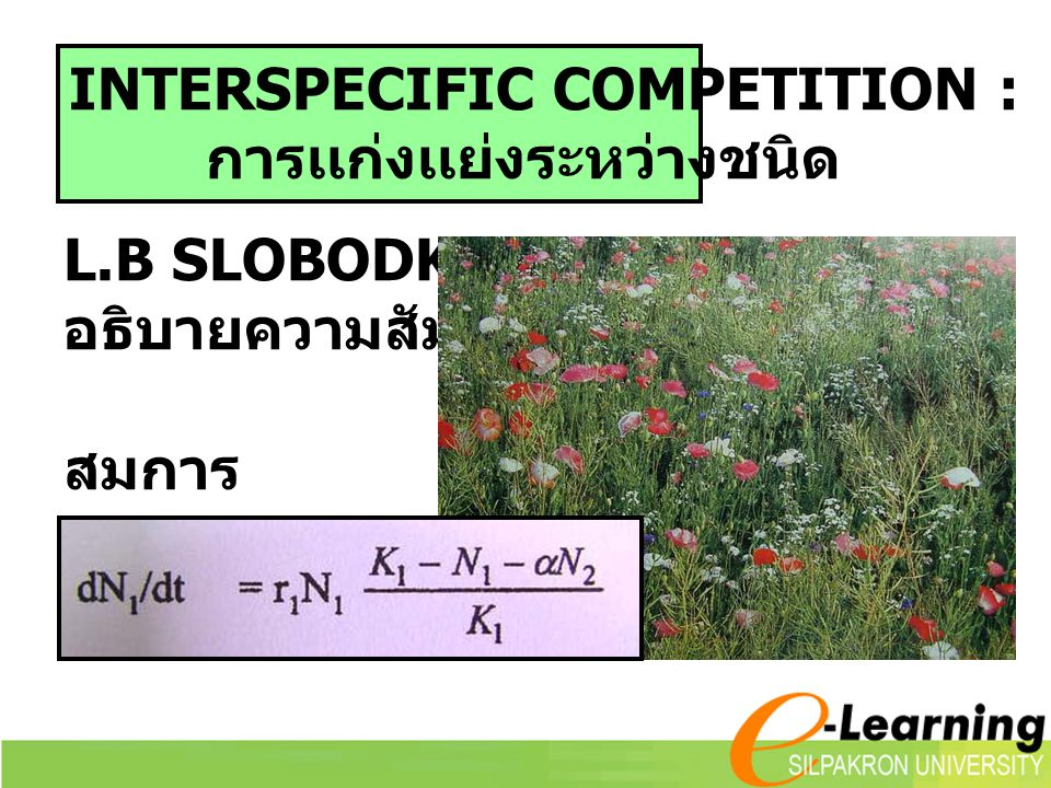 INTERSPECIFIC COMPETITION :