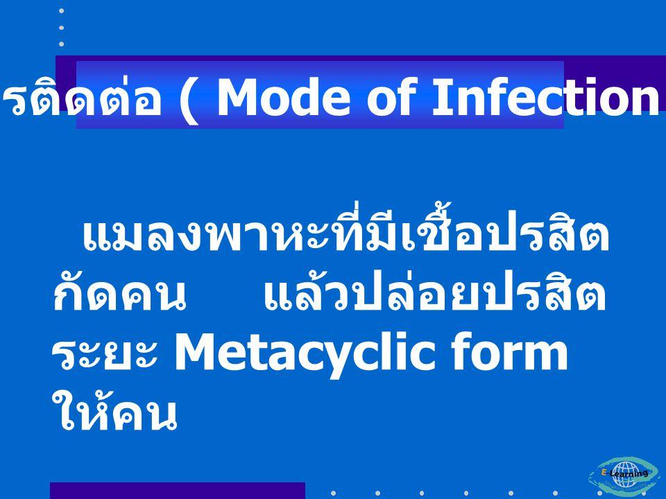 การติดต่อ ( Mode of Infection )