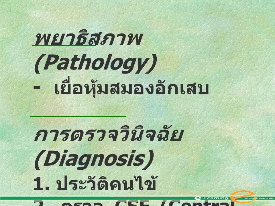พยาธิสภาพ (Pathology) - เยื่อหุ้มสมองอักเสบ