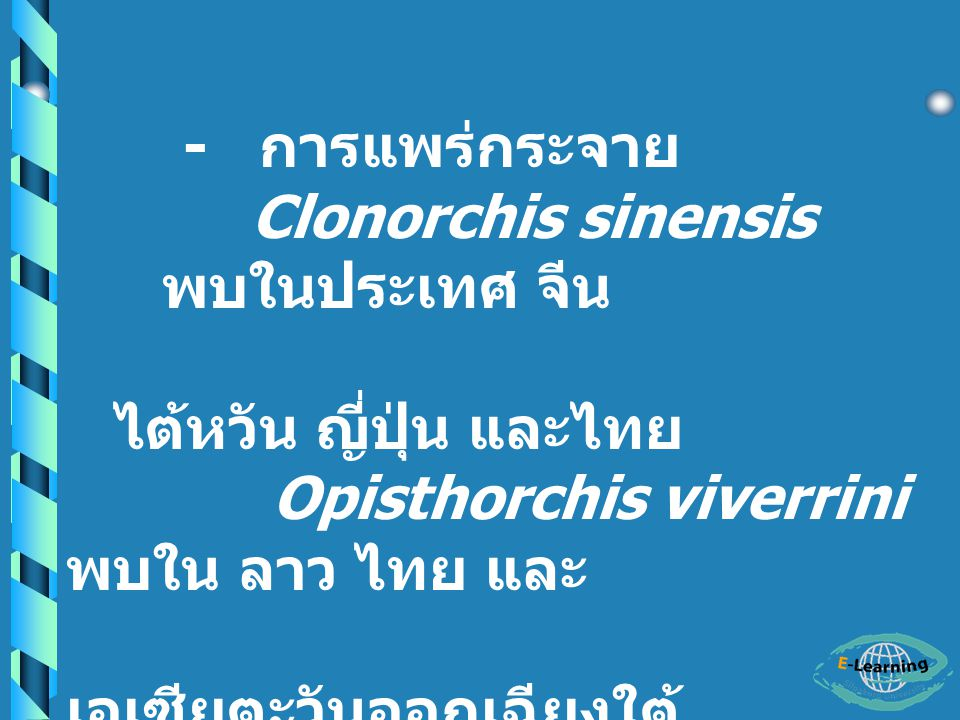 - การแพร่กระจาย Clonorchis sinensis พบในประเทศ จีน. ไต้หวัน ญี่ปุ่น และไทย. Opisthorchis viverrini พบใน ลาว ไทย และ.