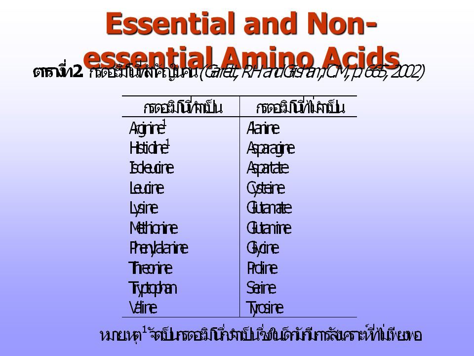 Essential and Non-essential Amino Acids