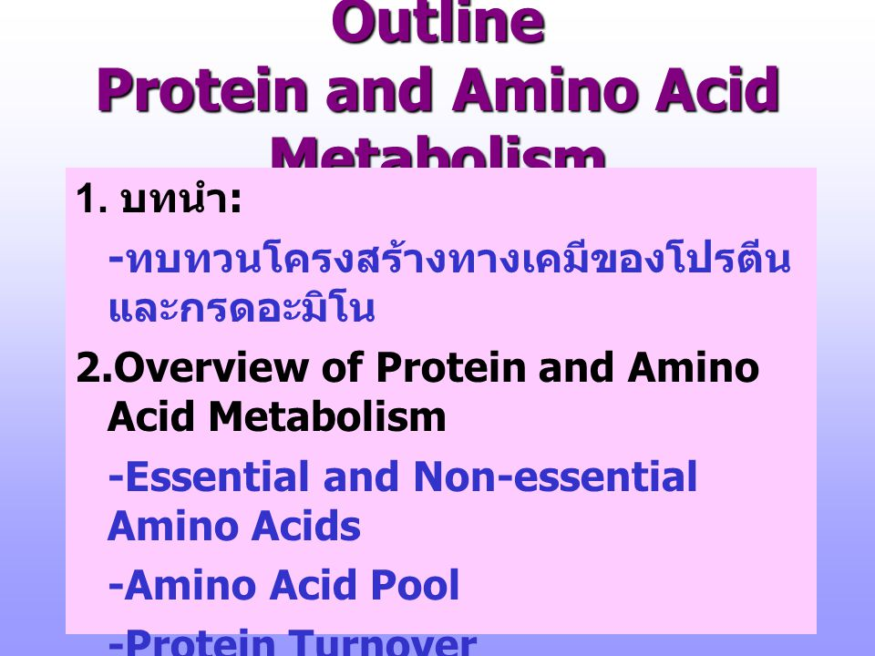 Outline Protein and Amino Acid Metabolism