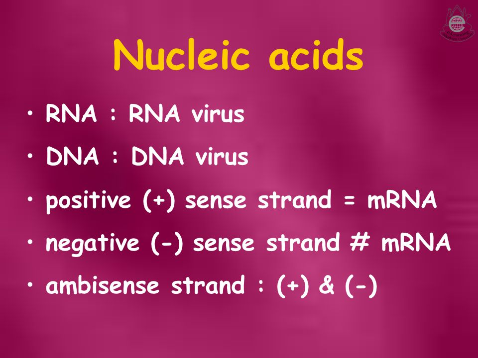 Nucleic acids RNA : RNA virus DNA : DNA virus