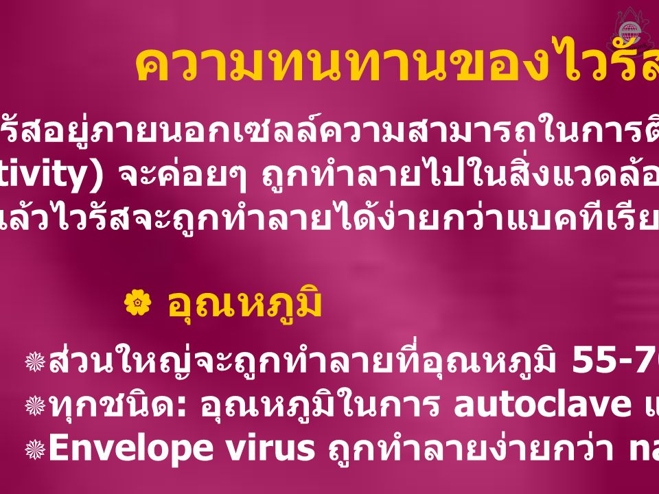 ความทนทานของไวรัส อุณหภูมิ
