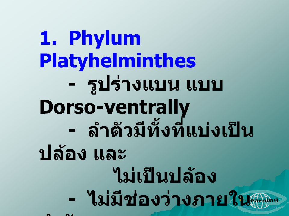 1. Phylum Platyhelminthes