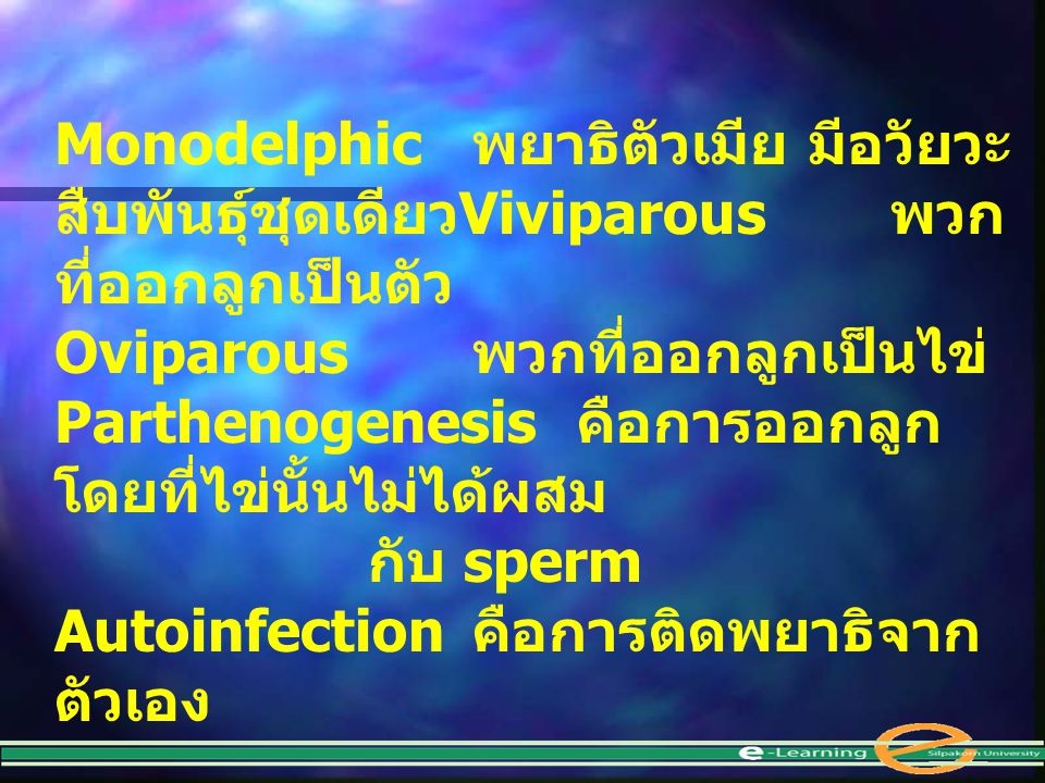 Monodelphic. พยาธิตัวเมีย มีอวัยวะสืบพันธุ์ชุดเดียวViviparous