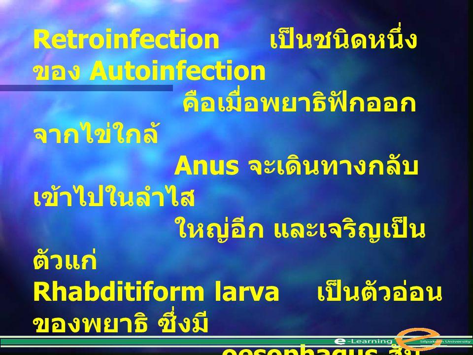 Retroinfection เป็นชนิดหนึ่งของ Autoinfection