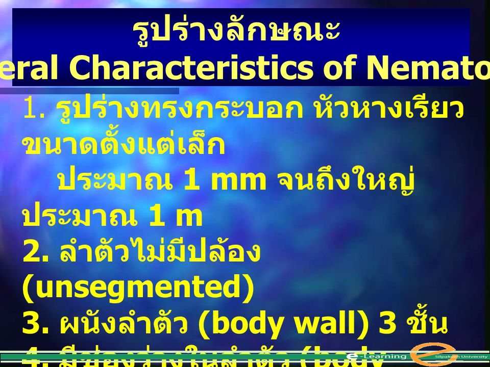 (General Characteristics of Nematodes)